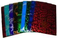 """Обложка для паспорта OfficeSpace ПВХ глянцевая, тиснение """"Герб"""""""