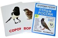 Обучающие карточки по методике Г. Домана «Птицы России», 12 карт, А6