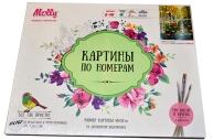 """Картины по номерам 40*50 """"Афремов. Под дождем"""" 8+ MOLLY G125"""