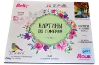 """Картины по номерам 40*50 """"Афремов. Осень в парке"""" MOLLY G128"""