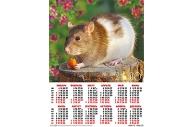 2020 Календарь А2 Крыса на пенечке №5