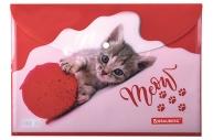 Папка-конверт с кнопкой А4, BRAUBERG FUNNY CAT, 160 мкм, до 100 листов, цветная печать,