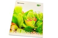 Тетрадь 48л. BRAUBERG кл., обл. мел. карт., Full Blossom (Цветы)  (5 видов)