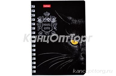 Записная книжка А6, 80 листов в клетку, на гребне Royal Cats, картонная обложка, блок офсет, МИКС