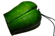 Брелок А122 перец зеленый половинка (пластик)