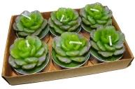 набор 6 свечей-картриджей КРАССУЛА 3. 5см зеленый